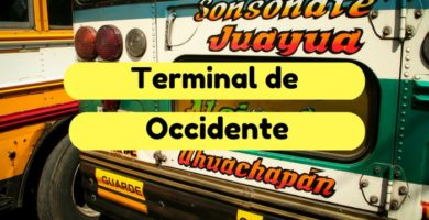 terminal de occidente